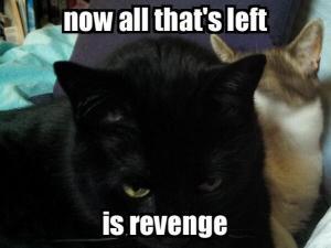 molly revenge